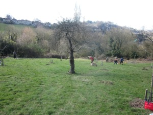 Richens Orchard 011
