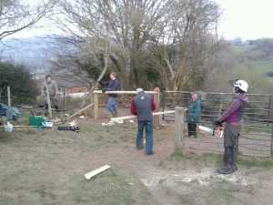 Fence building with the team.